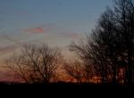Reds after sunset