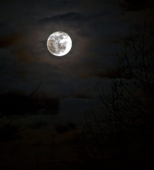 moon2_blog