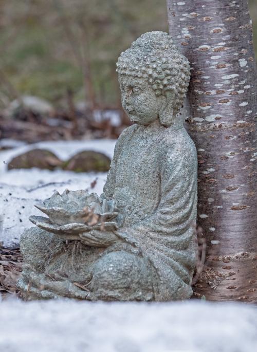 buddha_blog