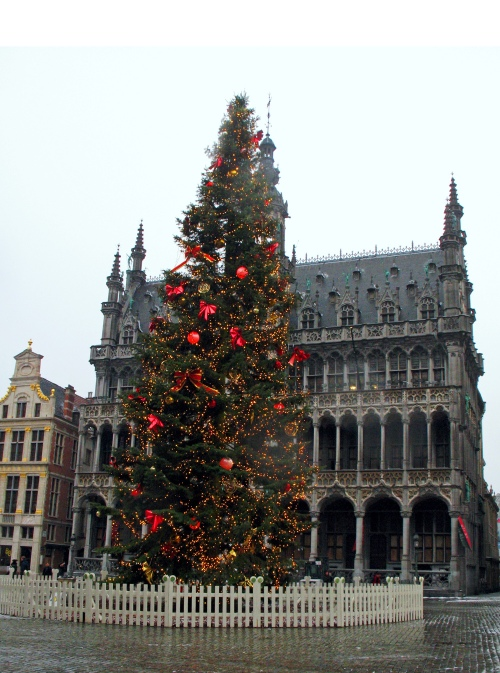 Brussels Christmas tree