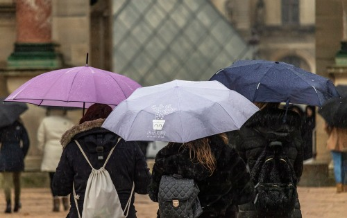 Umbrellas in Paris